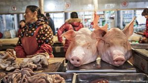 Swine Flu Continues to Spread