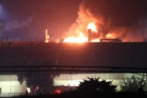 Beef Prices Double as Major Distributor Suffers Slaughterhouse Fire