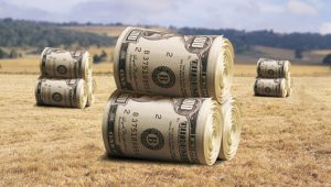 Virginia Captures Much Needed AG Grant