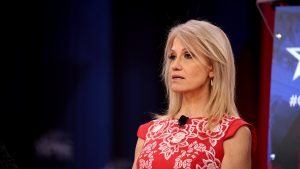 FAILED BUTT HURT DEMOCRAT ATTEMPTS TO SLAM KELLYANNE CONWAY…PUBLIC LASHES BACK AND STANDS WITH KELLYANNE